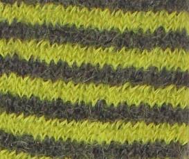 rayé chevêche chartreuse
